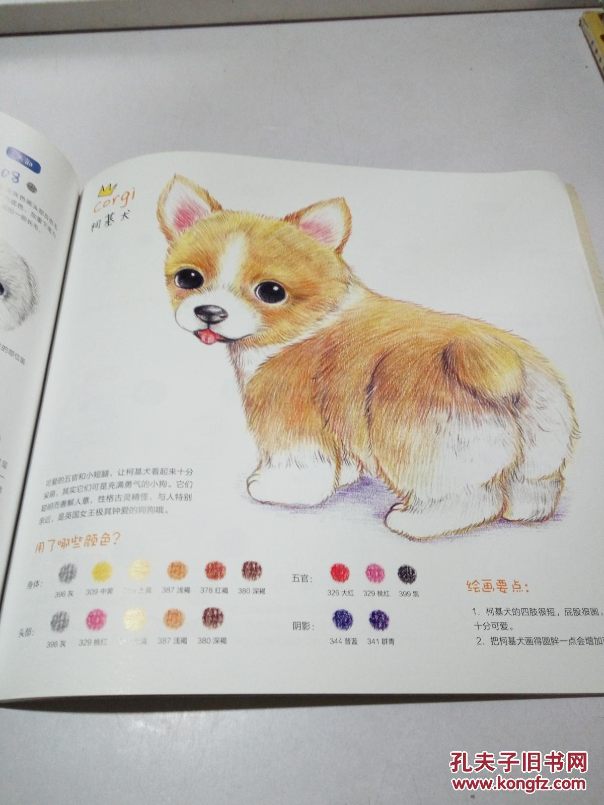 呆萌小动物画起来(一版一印)