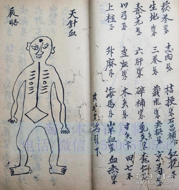 中医古籍手抄本 33