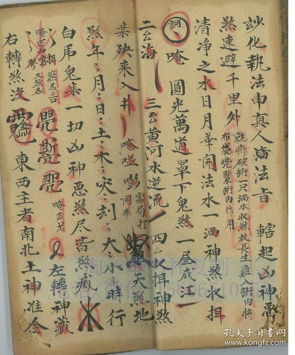 中医古籍手抄本 35