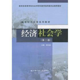 经济社会学(第2版)/21世纪社会学系列教材