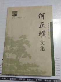 何正璜文集【王学理藏书】见图