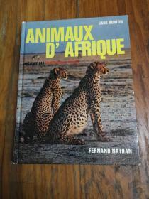 ANIMAUX DAFRIQUE ECOLOGIE DE I;EST AFRICAIN PAR JANE BURTON (精装大16开彩印画册,图文并茂 )