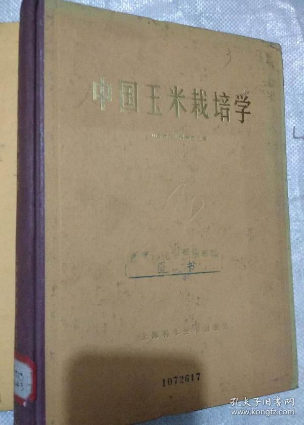 中国玉米栽培学