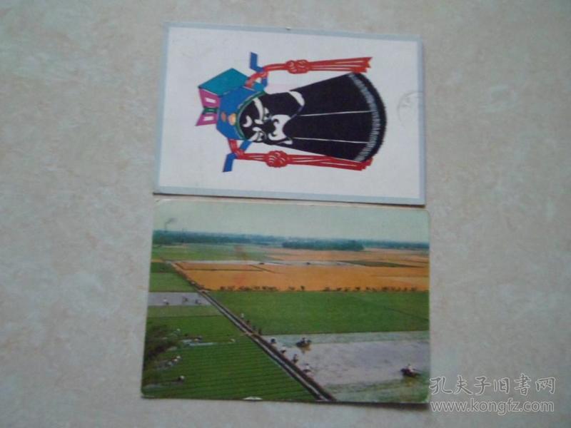 邮票封片(228号)2枚