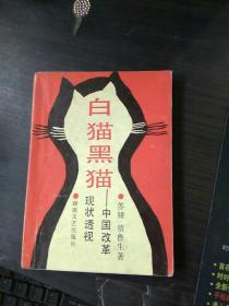 白猫黑猫:中国改革现状透视