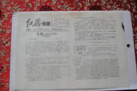 文革小报<油印红旗快报>42期