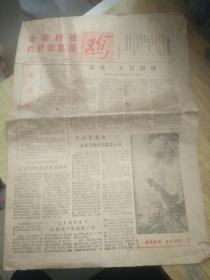 中国村镇百业信息报(试刊号)(1984年1月10号)(独份)(内容太阳特色了)(有告读者词)(边口有小裂损)