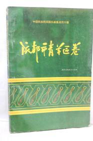 中国民族民间器乐集成四川卷・成都市青羊区卷