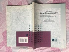 Custom Package for Financial Accounting 2021财务会计自定义包2021