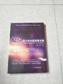 大案省视:前行的中国刑事法制/中国人民大学刑事法律科学研究中心刑案点评丛书
