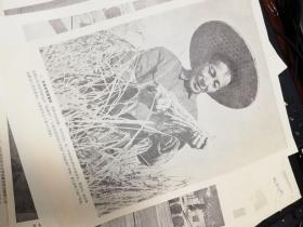 1966年印刷品-骆编全,厦门市交通局水运公司内海船队党支部书记骆编全-为革命扬帆摇橹