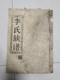 陇西堂李氏族谱 卷五 长房 新春公世系
