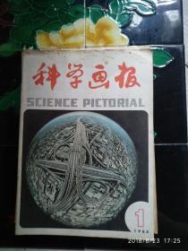 科学画报 1984年第1期