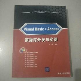 1+1数据库混合开发技术丛书:Visual Basic+Access数据库开发与实例.