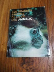 LES ANIMAUX DAFRIQUE(法文原版,精装大16开本,彩印插图本)