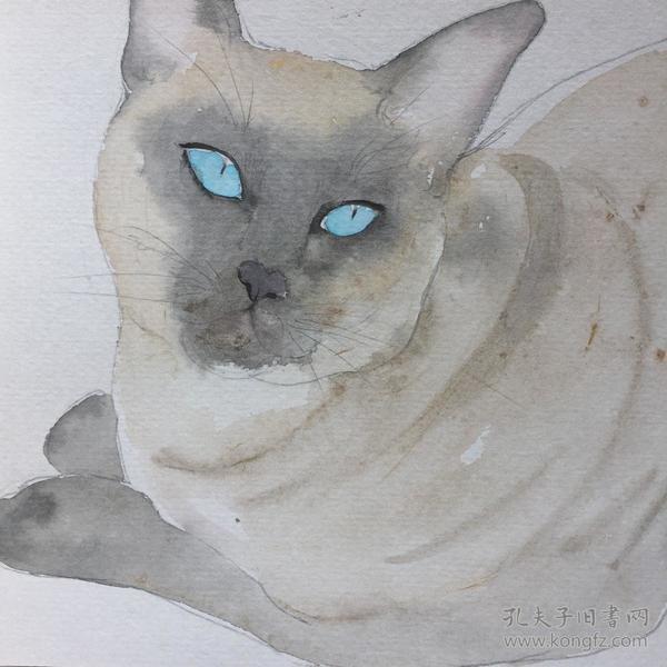 水彩画 《蓝眼睛》