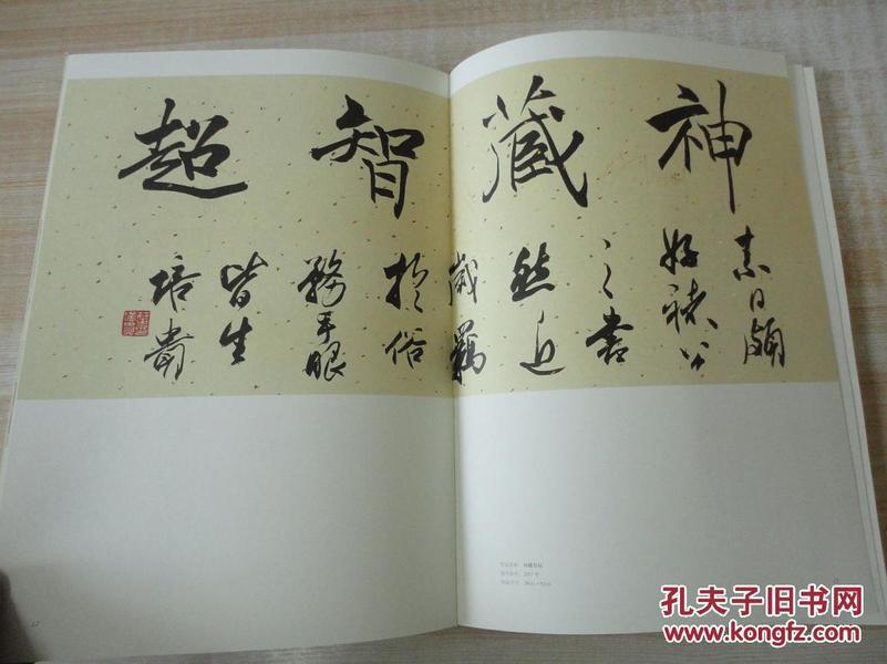 8开《中国美术馆当代名家系列作品集 书法卷 叶培贵 》内有签名 见图图片