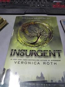 特价!Insurgent (Divergent Trilogy #2)反叛者 分歧者系列第二部 英文原版9780062127846