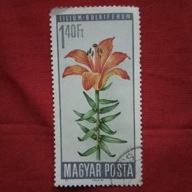 外国邮票花卉1