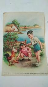 年画 《饲鸡(一)》·李慕白作 16开 1955年出版