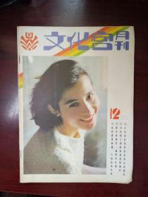 文化宫(1985年第12期)