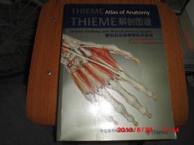 THIEME解剖图谱——解剖总论和骨骼肌肉系统(英文影印版)