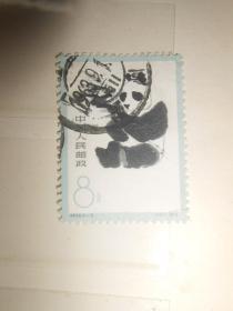 特59熊猫 3-3  信销票