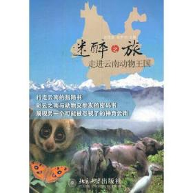 迷醉之旅:走进云南动物王国