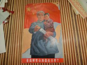 你为解放台湾做些什么?画片