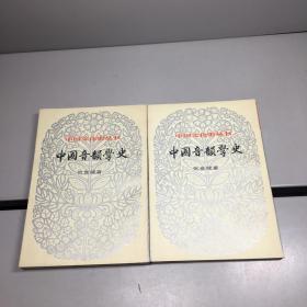 中国文化史丛书 第二辑:中国音韵学史 (上下全二册)【 9品-95品+++ 正版现货 自然旧 实图拍摄 看图下单】
