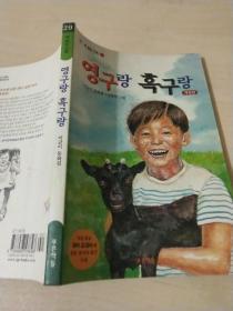 韩文书一本c20-15