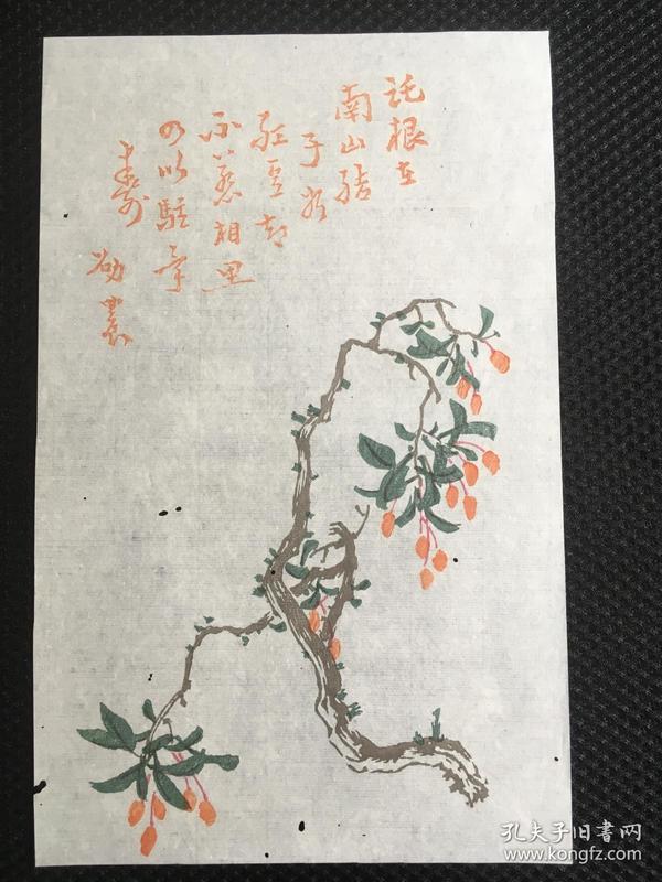 民国荣宝斋笺纸  邵农(王振声)之 5