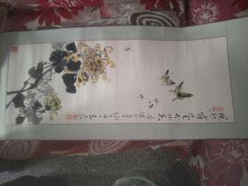 菊花 蝴蝶  贾志远