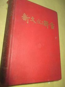 新文化辞书   32开.硬精装
