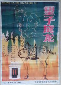 中国经典年画宣传画电影海报大展示------全开------《望子成龙》-----手绘版-----虒人荣誉珍藏