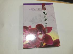 热带兰花种养与鉴赏