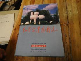 红星企业集团志(16开精装+护封、1993年1版1印)