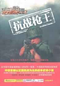 遍地狼烟2:抗战枪王