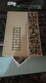 中国新文学大系道论集