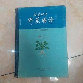 西藏地区野菜图谱
