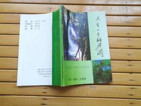 天生一个桃源洞 —— 桃源洞国家森林公园揽胜