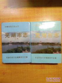 芜湖市志(上下)