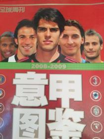 意甲图鉴 2008