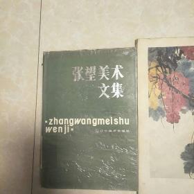 张望美术文集