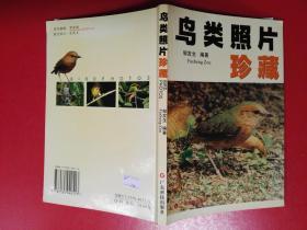 鸟类照片珍藏