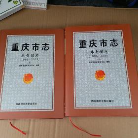 重庆市志共青团志(1986-2005)(上下)