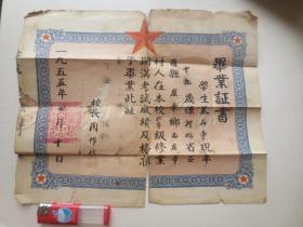 1955年 河北省安国县崔章中心小学 毕业证