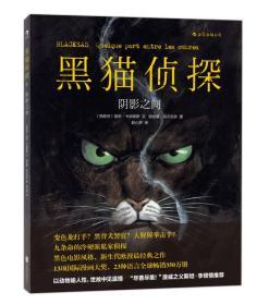 黑猫侦探 I:阴影之间
