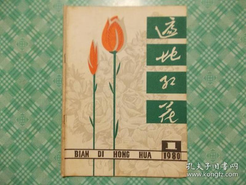 遍地红花1980年第一期