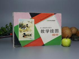 《教学挂图缩样:初中动物学》(上海教育)1990年一版一印 品好※ [精美全彩画集 -老教材、中学教科书、连环画 少儿童科学知识读本:软体昆虫、脊椎 鱼类 青蛙 鸟类、哺乳类 兔子家兔、鸭嘴兽、猫咪、黑狗熊、珍稀 大熊猫 东北虎 白鱀豚 朱鹮 扬子鳄]